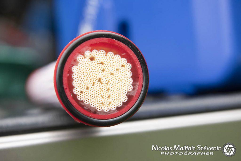La cartouche de filtration permet d'éviter virus et bactéries